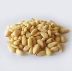 画像1: 松の実(1kg)